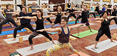 YOGA ALLIANCE 200 HOURS HATHA YOGA TEACHER TRAINING Certification